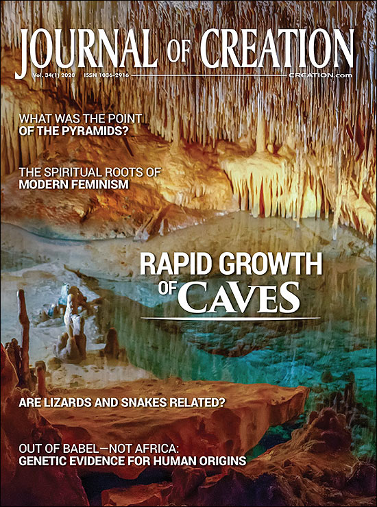 Journal of Creation Volume 34(1) Cover