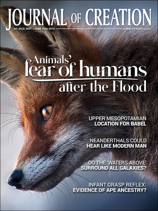 Journal of Creation Volume 35(2) Cover