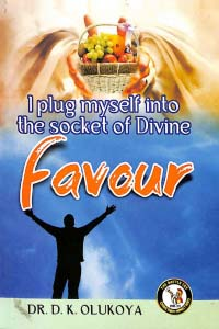 I Plug Myself into The Socket of Divine Favour