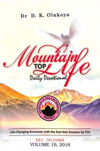 Mountain Top Life Daily Devotional: Volume 1B 2016