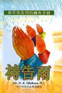 Prayer Rain Chinese Edition