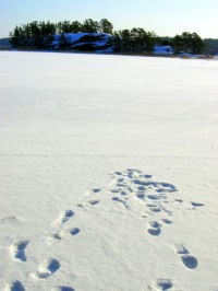 footprints snow