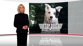 Topdog_60minaustralia_aug2016_-_small