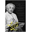Einstein - Life