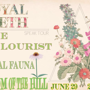 Royal Teeth, The Colourist, Feral Fauna