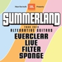 101X PRESENTS: SUMMERLAND TOUR 2013 Everclear, Live, Filter & Sponge