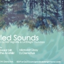 NSP Live & LATENight Thursdays pres. UNTITLED SOUNDS feat. MARAT 24K, MICRODOT GBOY, THE ANNIHILIST, DJ DEMCHUK