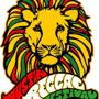 Austin Reggae Festival Day 1 with Collie Buddz, New Kingston