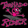 Tornado Rider, Raina Rose, Wood and Wire