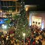 The Domain's 5th Annual Lighting of the Great Tree