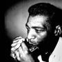  Little Walter's Birthday featuring Billy Branch and the Sons of the Blues Chicago Blues: An Urban Experience