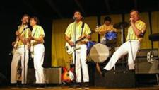 Surfin' Safari - The Ultimate Tribute to The Beach Boys plus TBD
