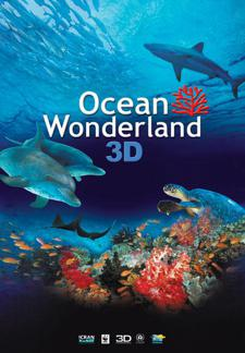 Ocean Wonderland 3D