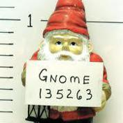Gnome Night