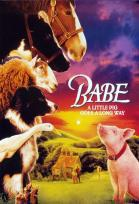 Alamo Kids' Camp Presents BABE