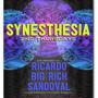 Synesthesia 2nd Thursdays