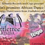 Rattletree Marimba and DJ Tego at Copa-African Dance Party