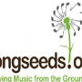 Songseed's Austin Music Showcase – A Holiday Benefit for Grounded in Music