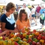 Sustainable Food Center Farmers' Market—Zero Waste Initiative Every Wednesday and Saturday