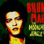 Bruno Mars Moonshine Jungle World Tour