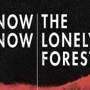  Now, Now and Lonely Forest