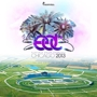  Electric Daisy Carnival Chicago 2013 Day 3