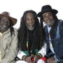 The New Parish and Wanubi Project Present The Wailing Souls, Pure Roots