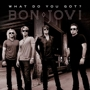 BON JOVI Because We Can - CANCELED