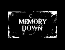  Memory Down