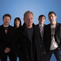 SOLD OUT New Order with Holy Ghost!