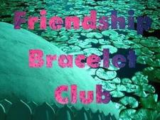 Friendship Bracelet's profile picture