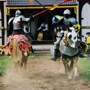 Black Sheep Lodge 4th Annual Anniversary Party - Renaissance Faire