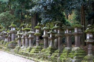 Lanterns at Kasuga Taisha, Nara