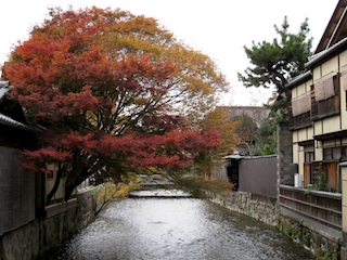 Autumn colors spreading across a canal in the Gion district, Kyoto, Japan
