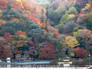 autumn colors at Arashiyama