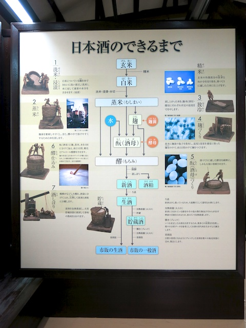 Step-by-step sake-making at Gekkeikan Museum, Fushimi, Japan