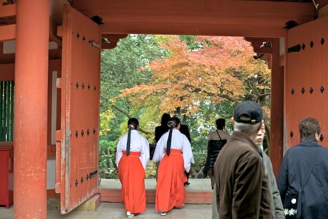 Miko at Kasuga Taisha