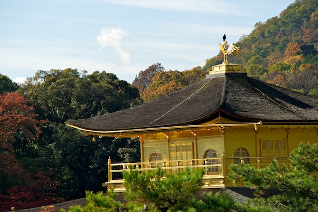 Kinkakuji roof, with crow
