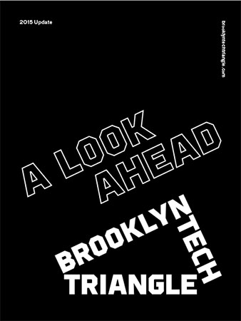 Brooklyn-Tech-Triangle_Strategic-Plan-Update_2015-1.jpg#asset:15710