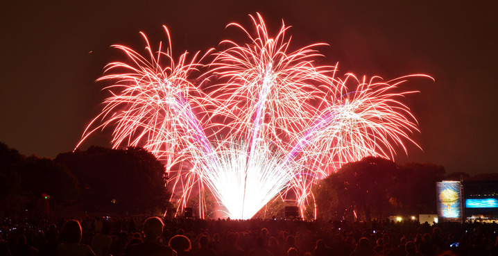 Fireworks_credit_marc_cappelletti_creative_commons_cropped