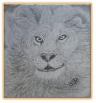 Drawing: Lion