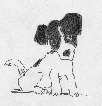 Drawing: puppy