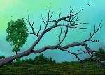 Drawing: Fallen Tree