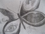 Drawing: HumanButterfly