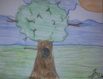 Drawing: Tree by Sierra Moore