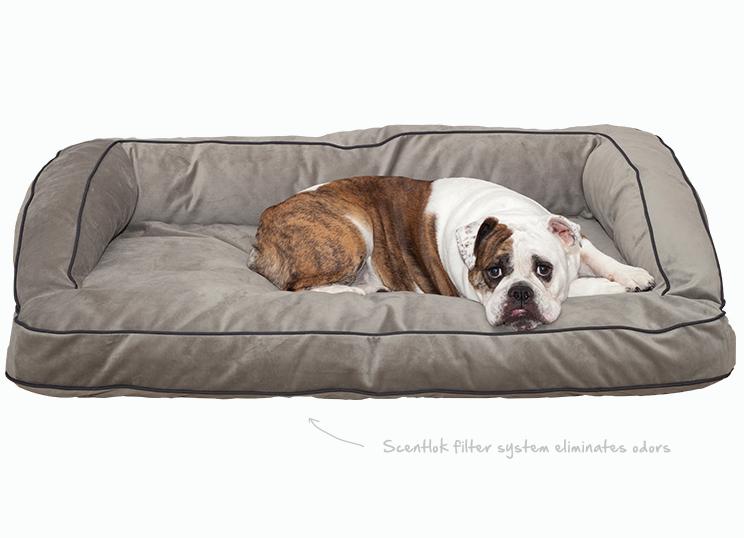 Slumber Sofa