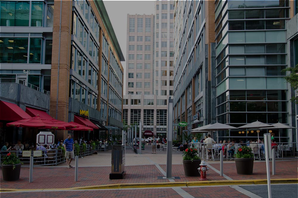 Header Image for Reston