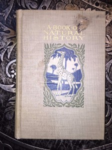 A-Book-of-Natural-History-Thomas-B-Aldrich-Vol-XIV-of-Young-Folks-Library-291522834795