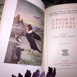 A-Book-of-Natural-History-Thomas-B-Aldrich-Vol-XIV-of-Young-Folks-Library-291522834795-5