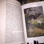 A-Book-of-Natural-History-Thomas-B-Aldrich-Vol-XIV-of-Young-Folks-Library-291522834795-9